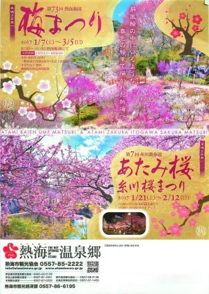 熱海 梅 桜
